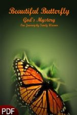 Beautiful Butterfly: Gods Mystery (E-book Download) by Sandy Warner
