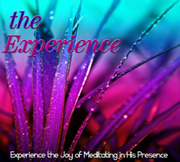 The Experience (MP3 Music Download) by David Baroni